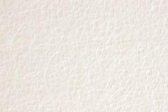 Styrofoam plastic texture Stock Image