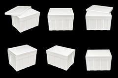 Styrofoam storage box on black background Stock Image