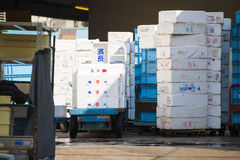 Styrofoam storage box for frozen food Royalty Free Stock Image