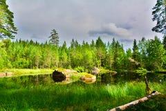 Suécia do Orsa Imagens de Stock Royalty Free