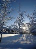 Suédois Laponie en hiver Images libres de droits