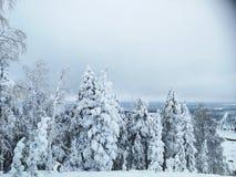 Suédois Laponie en hiver Photographie stock libre de droits