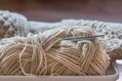Suéter hecho punto con las agujas que hacen punto y el hilado Fotografía de archivo libre de regalías