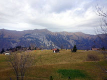 Suíça Axalp imagem de stock