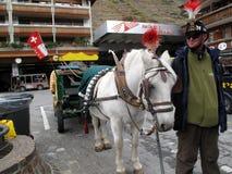 Suíça de Zermatt - cumes suíços Fotografia de Stock Royalty Free