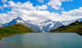 Suíça do cume dos abetos do lago Fotos de Stock Royalty Free