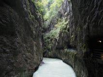 Suíça do desfiladeiro de Aare Imagem de Stock