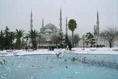 Sułtanu ahmet meczet w śnieżnej pogodzie fotografia royalty free