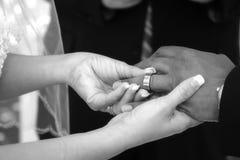Su anillo Foto de archivo libre de regalías