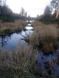 Su The Creek senza una pagaia fotografia stock libera da diritti