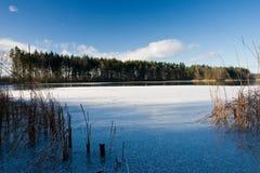 Su ghiaccio dello stagno congelato Immagine Stock