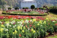 Su jardín de Queen Sirikit Botanical de la majestad Imagenes de archivo