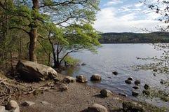 Su un lago Immagini Stock