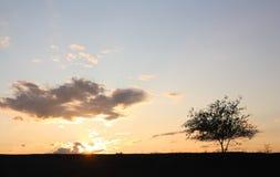 Su un tramonto fotografie stock libere da diritti