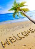 Su una spiaggia è scritto il benvenuto e una palma Immagini Stock