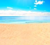 Su una spiaggia fotografia stock libera da diritti