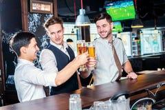 Sua saúde Quatro homens dos amigos que bebem a cerveja e que têm o toget do divertimento fotos de stock royalty free