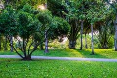 Suan Luang Rama IX公园自然亭子地标  库存照片