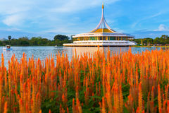 Suan Luang RAMA IX public park Royalty Free Stock Photos