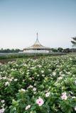 Suan Luang Rama 9 public park Royalty Free Stock Photos