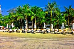 Suan son pradipat beach. A beach is beautiful, the green tree, the sky is blue Stock Photos