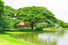 Suanluangrama9 Royalty Free Stock Photography