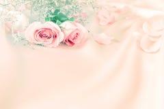 Suavemente flores color de rosa del dulce para el fondo del romance del amor Imágenes de archivo libres de regalías