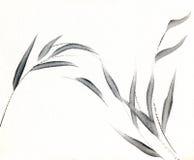 Suavemente hojas del gris Fotos de archivo