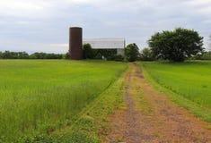 Suavemente, los colores que se hacen querer de la primavera calman el alma en esta escena del camino en una granja fotos de archivo