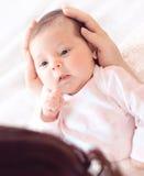 Suavemente manos de la madre que detienen al bebé Recién nacido regordete y hermoso fotos de archivo libres de regalías