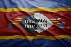 Suazi bandery Obraz Royalty Free