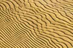 Sub-aqueous sand dunes Stock Photo