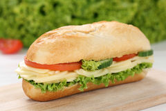 Sub deli sandwich baguette with cheese Stock Images