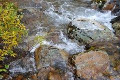 Sub-polar mountains creek Stock Photo