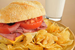 Sub sandwich closeup Royalty Free Stock Photo