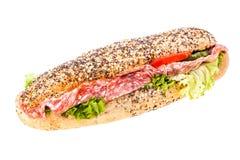 Sub sandwich Royalty Free Stock Photo