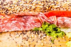 Sub sandwich detail Stock Images