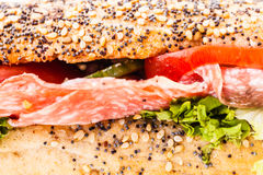 Sub sandwich macro. Macro close up detail of a delicious salami sub sandwich Stock Image