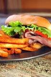 Sub van het Rundvlees van het braadstuk Stock Afbeelding