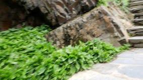 Suba para arriba las escaleras en el parque de la ciudad