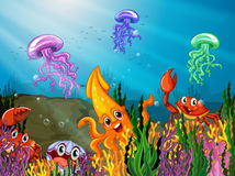subacqueo Fotografie Stock