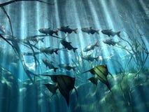 Subacuático Imagen de archivo libre de regalías