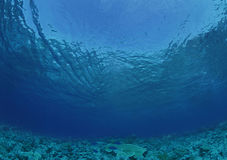 Subacuático Fotografía de archivo