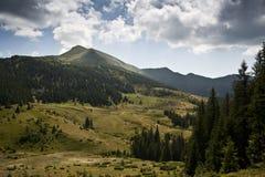 Subalpin äng i de Carpathian bergen Royaltyfria Bilder