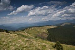 Subalpin äng och en väg på en lutning av ett berg i de Carpathian bergen Fotografering för Bildbyråer