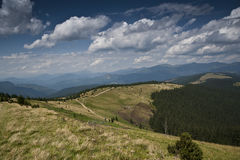 Subalpine meadow and a road on a slope of a mountain in the Carpathian mountains Stock Image