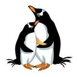 Subantarctic un pensamiento del papuan del pingüino Ilustración del vector Foto de archivo