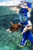 Subaquático Fotos de Stock Royalty Free