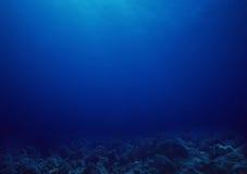 Subaquático fotografia de stock royalty free