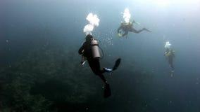 Subaqueo che nuota underwater profondo stock footage
